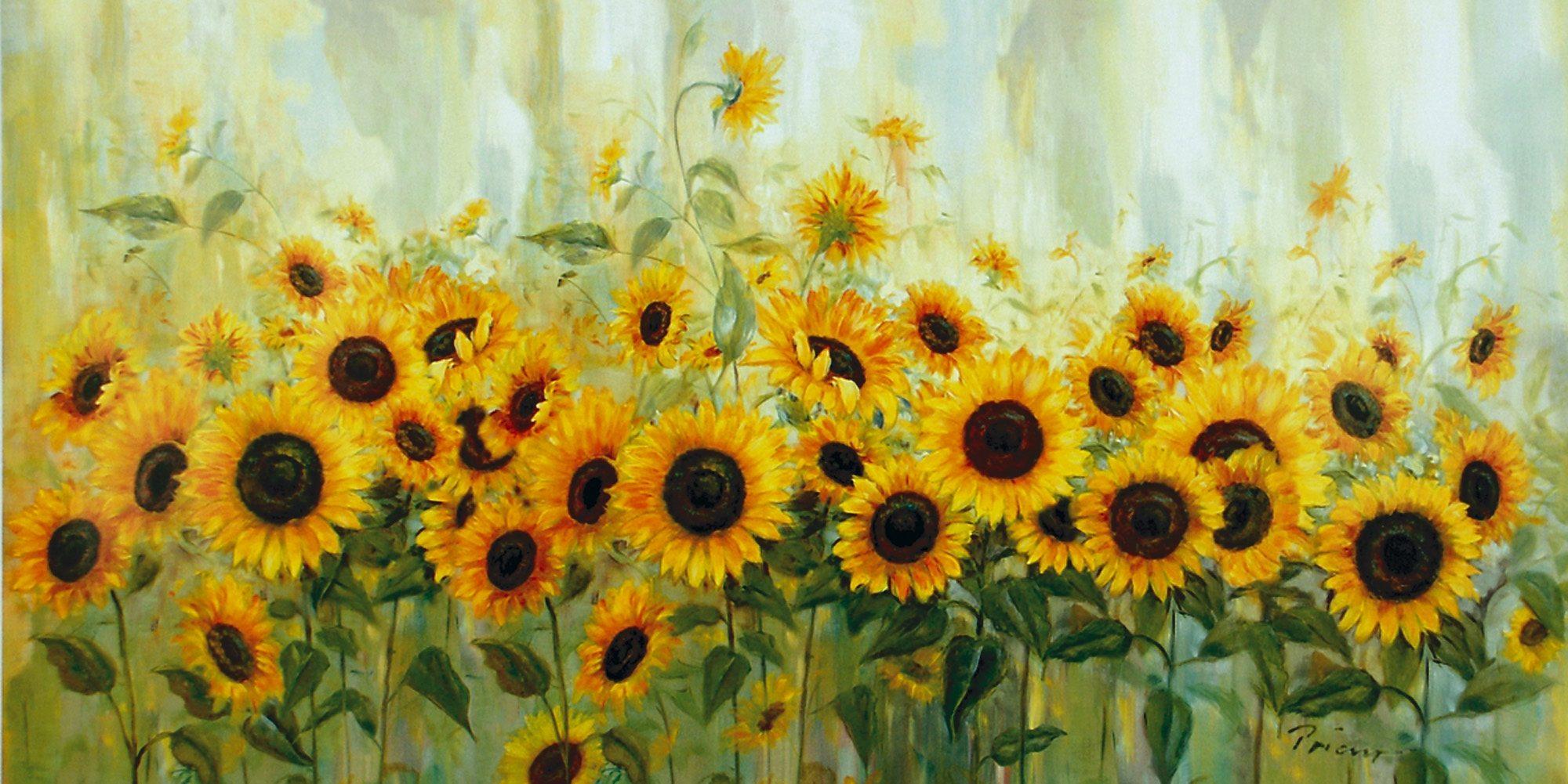 Home affaire, Leinwandbild, »Prieur: Sonnenblumenwiese«, 99/49 cm
