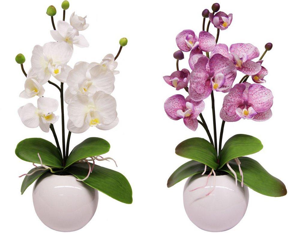 Home affaire Kunstblume »Orchidee« (2 Stck.) in violett/weiß