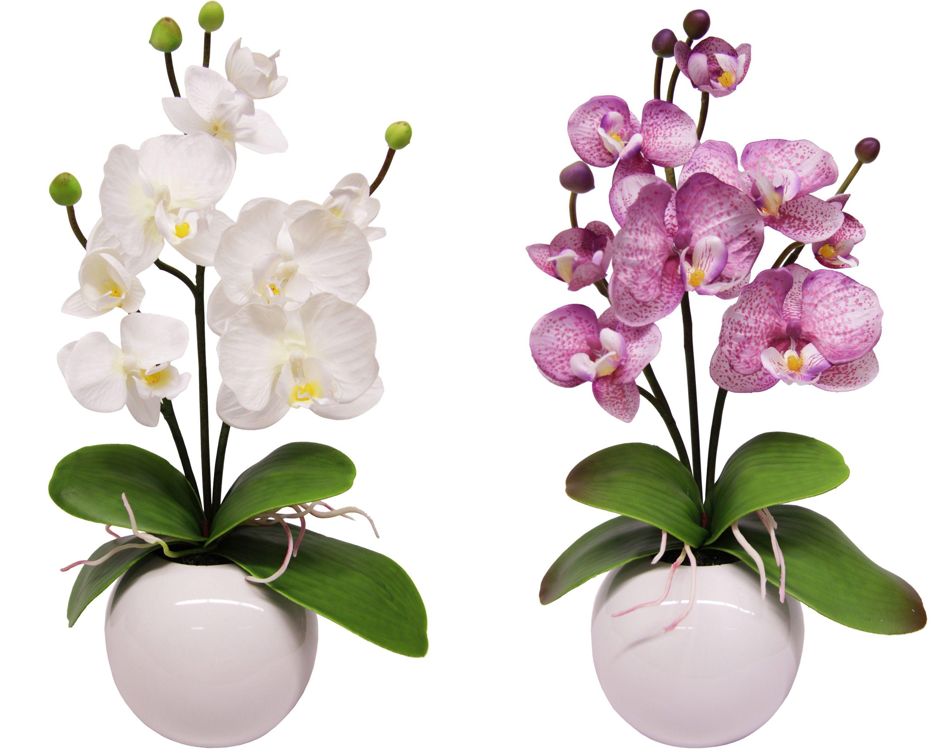 Home affaire Kunstblume »Orchidee« (2 Stck.)