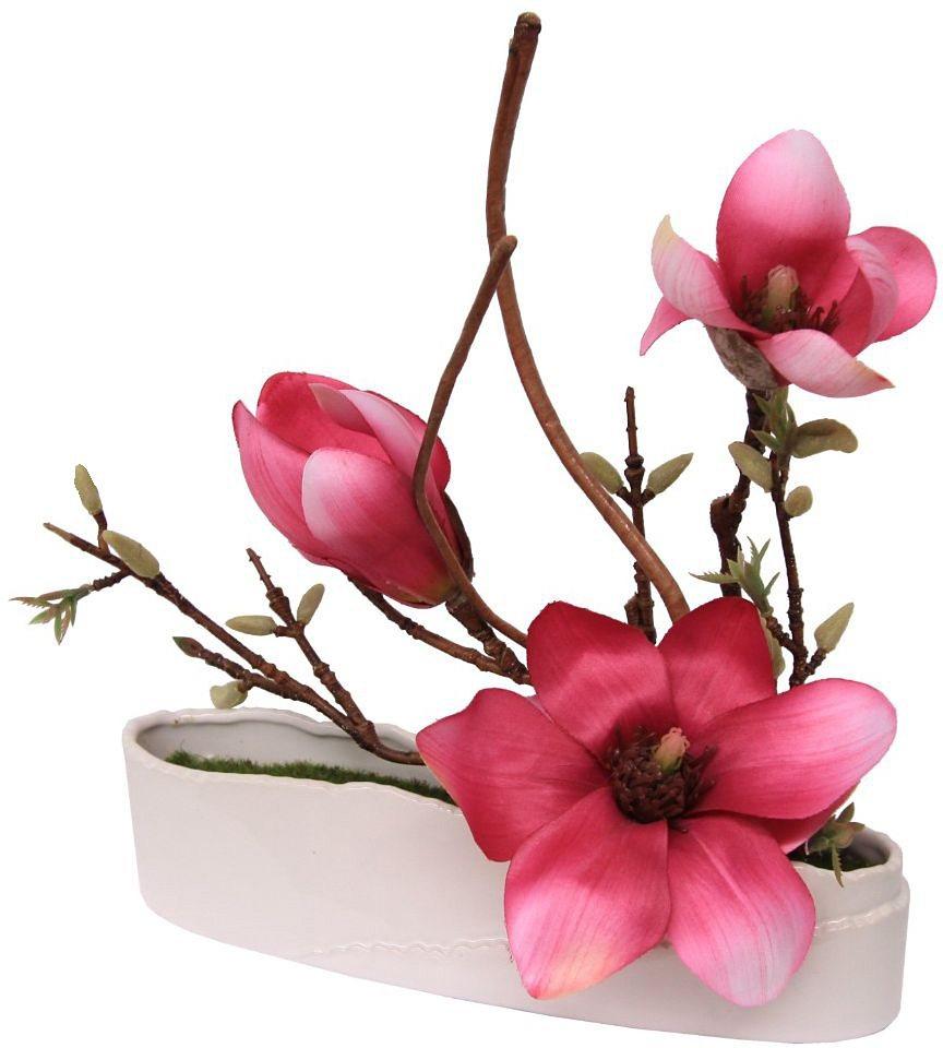 Home affaire Kunstblume »Magnolie in Schale« in rosa