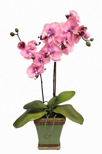 Home affaire Kunstpflanze »Orchidee««