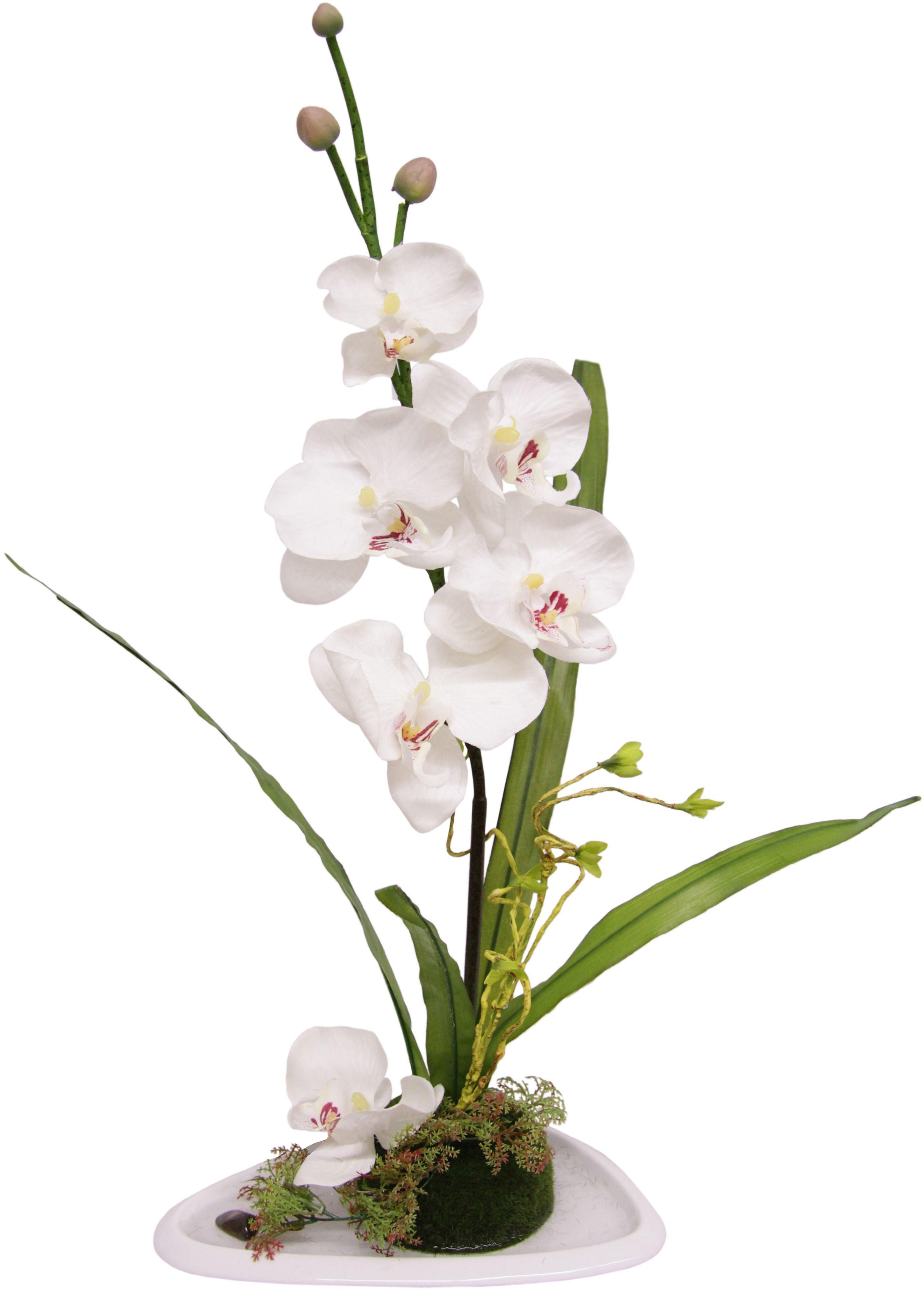 Home affaire Kunstblume »Orchidee« in einer Keramikvase