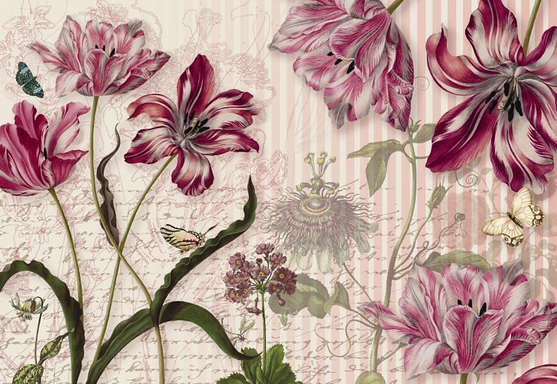 Fototapete, Komar, »Merian«, 368/254 cm in lila/rosa