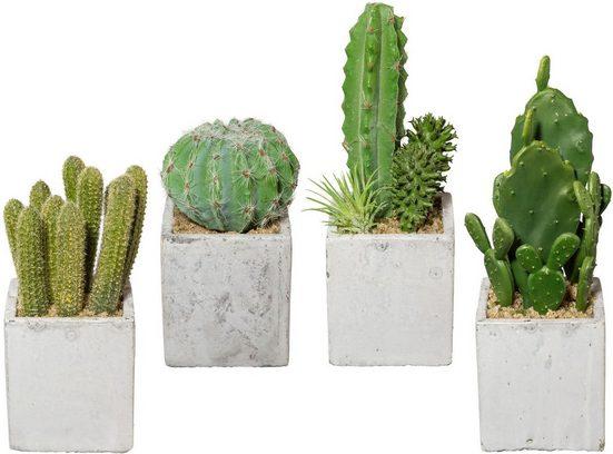 Kunstkaktus »Kaktus«, Creativ green, Höhe 22 cm, 4er Set, im Zementtopf