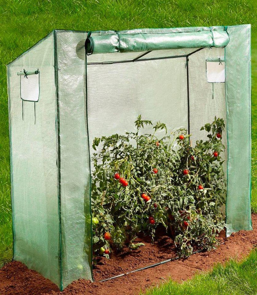 Tomaten-Gewächshaus, B/T/H: 200/80/169cm in grün