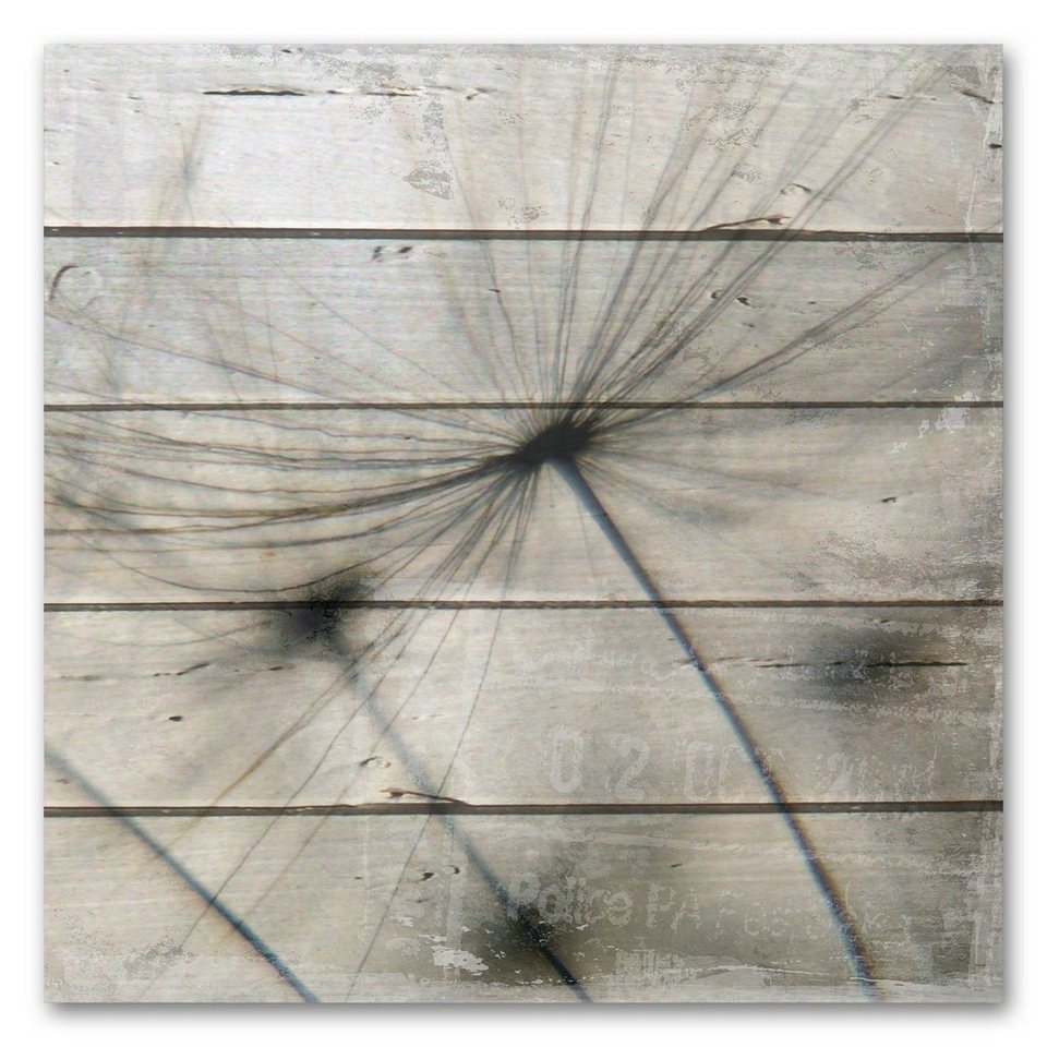 Holzbild »Pusteblume«, 50x50cm in grau