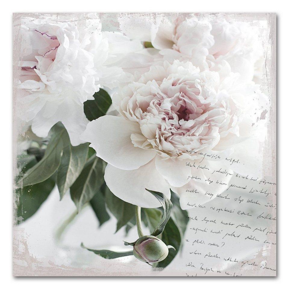 Acrylglasbild »Poesie&Rose«, 50x50cm in lila