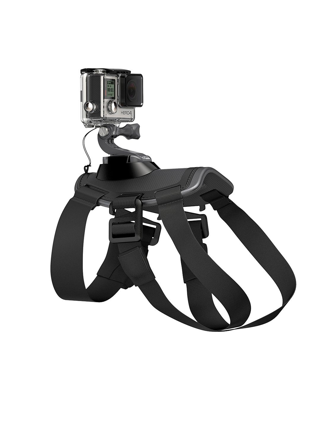 "GoPro Hunde-Halterung für HERO »""Fetch™ (Dog Harness)"" ADOGM-001«"