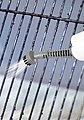 CLEANmaxx Dampfbesen 3in1, 1500 Watt, mit 3in1 Funktion, Bild 24