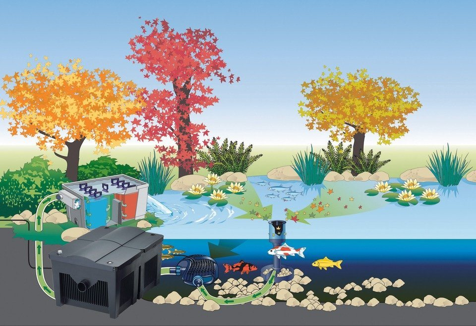 Set: Teichfilter »BioSmart Set 5000« in schwarz