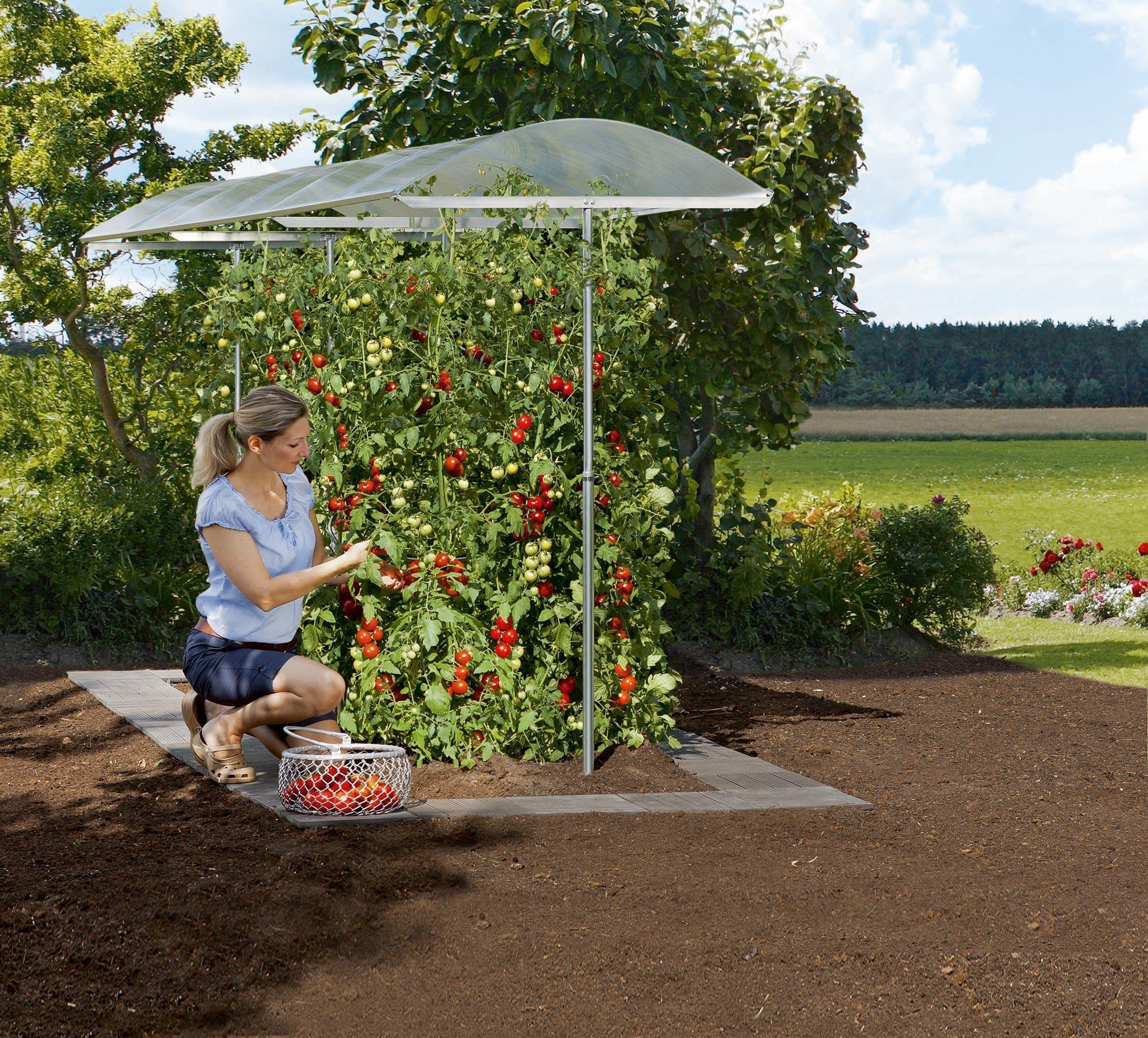 BECKMANN Pflanzenschutzdach , BxL: 112x300 cm , silberfarben