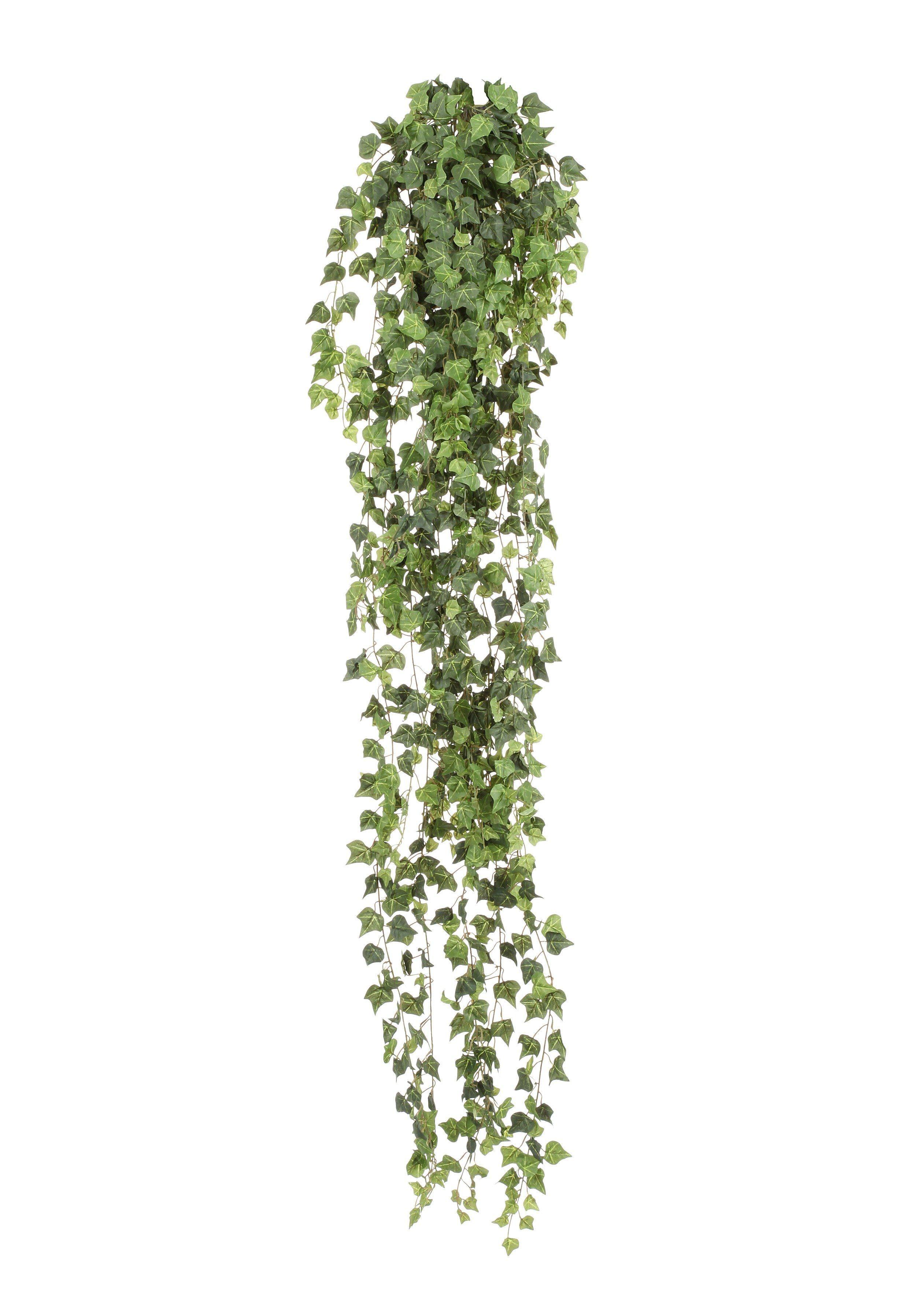 Kunstpflanze »Efeuranke«, H: 80 cm