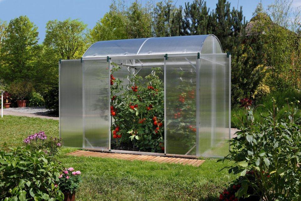 Tomaten-Gewächshaus »GB 2« in silberfarben