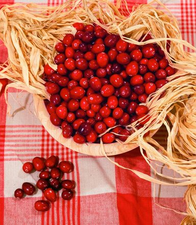 Obst »Cranberry«