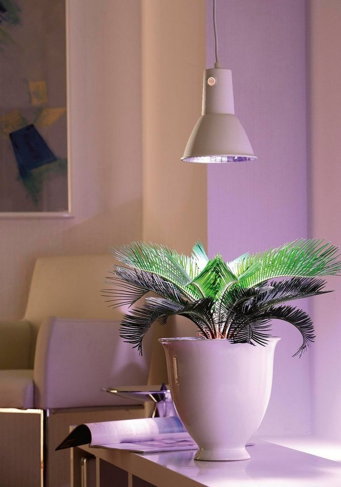 biogreen pflanzenlampe l 15 f r gew chsh user 15 watt. Black Bedroom Furniture Sets. Home Design Ideas