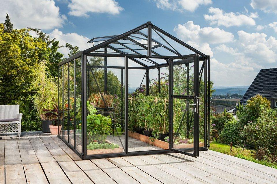 Vitavia Gewächshaus »Zeus 8100«, BxT: 266x324 cm, schwarz in schwarz