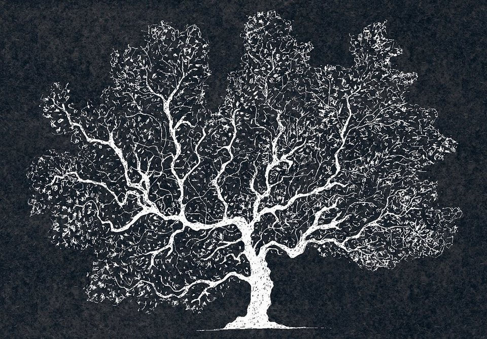Fototapete, Eurographics, »White Wood«, 366/254 cm in weiß/anthrazit