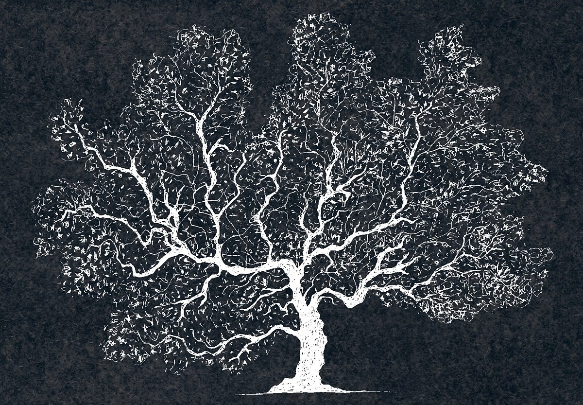 Fototapete, Eurographics, »White Wood«, 366/254 cm