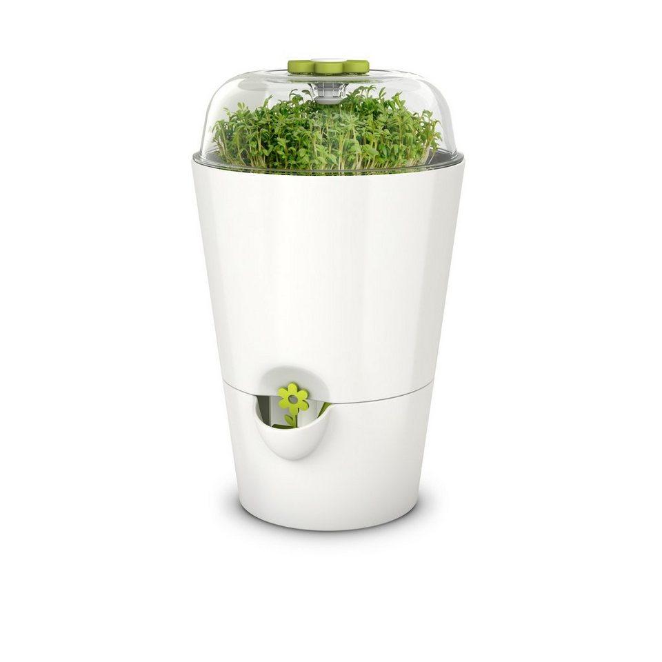 Emsa Kräutertopf mit Pflanzglocke »Fresh Herbs« in Weiß