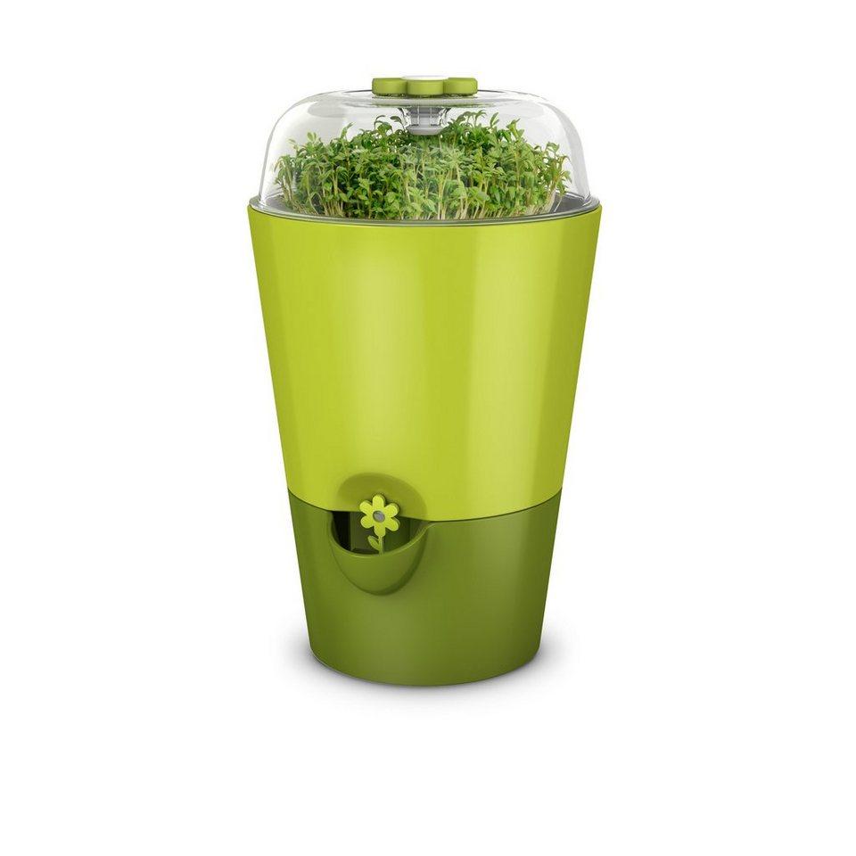 emsa Kräutertopf mit Pflanzglocke »Fresh Herbs« in Grün
