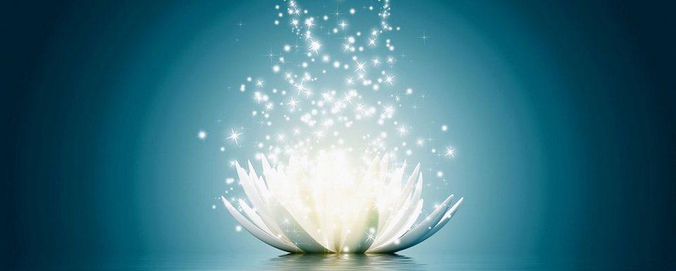 Premium collection by Home affaire Glasbild »V. Georgiev: Magie der Lotus-Blume«, 125/50 cm in Blau