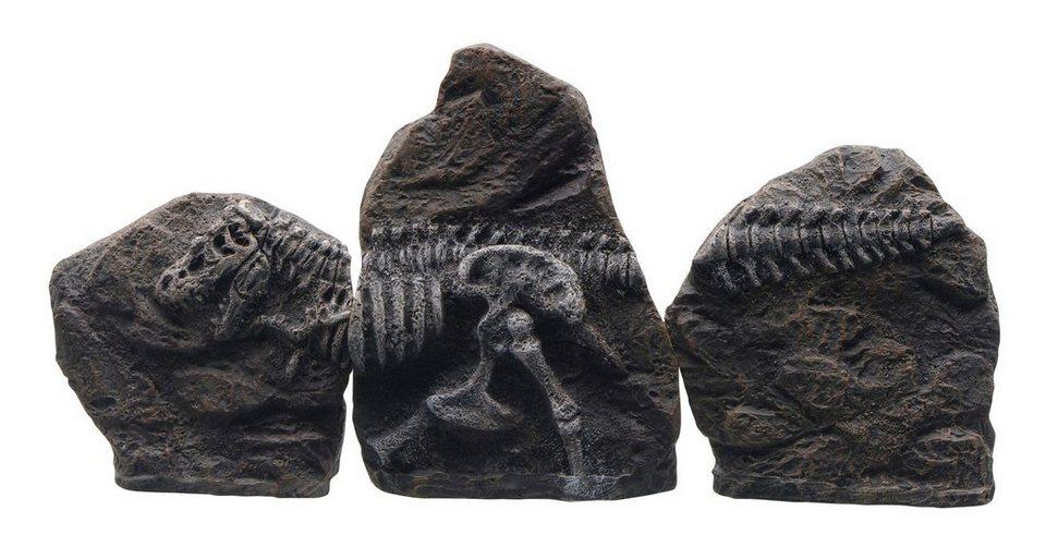 Aquariendeko »T-Rex und Gedrehtes Treibholz« in braun