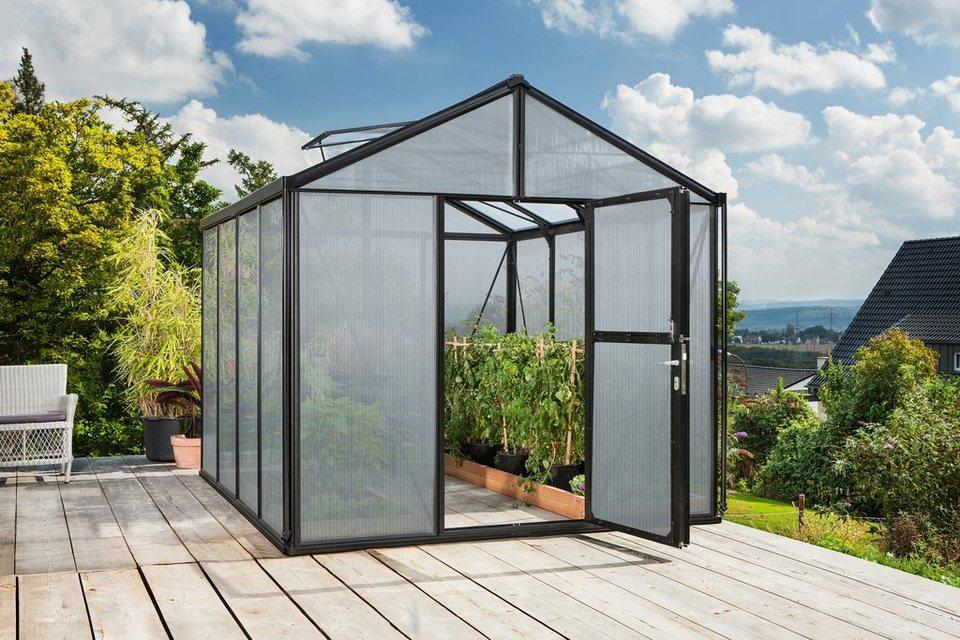 Vitavia Gewächshaus »Zeus 10000«, BxT: 266x399 cm, schwarz in schwarz