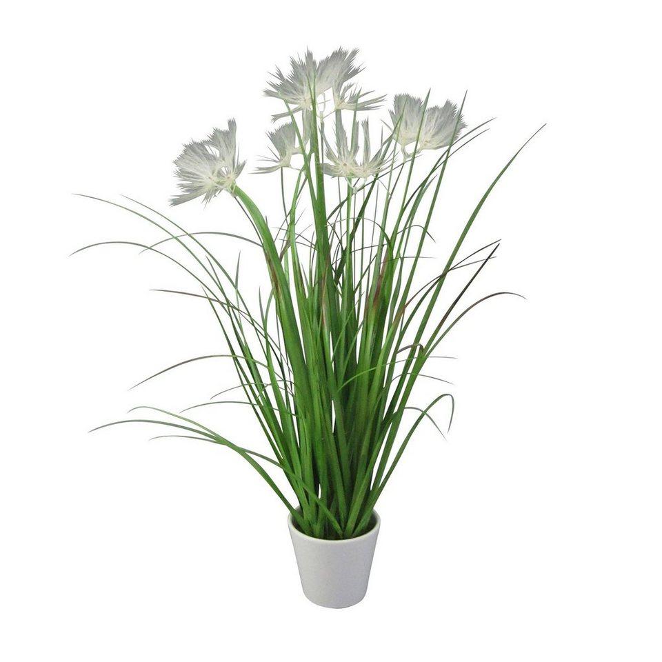 Kunstpflanze »Federgrasbusch« in weiß