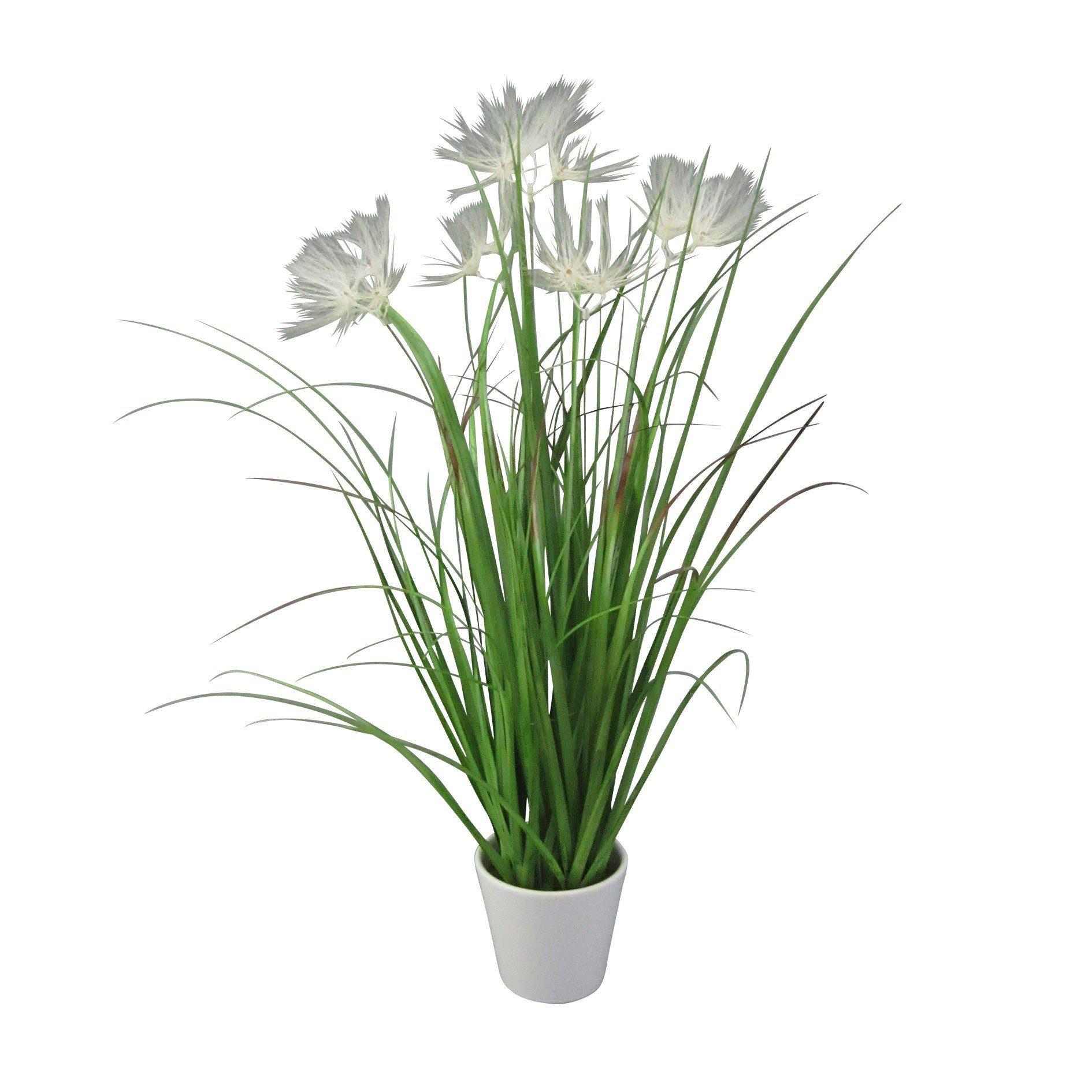 Kunstpflanze »Federgrasbusch«, H: 50 cm