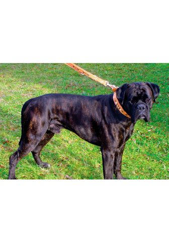 HEIM Šuns antkaklis »Buffalo«