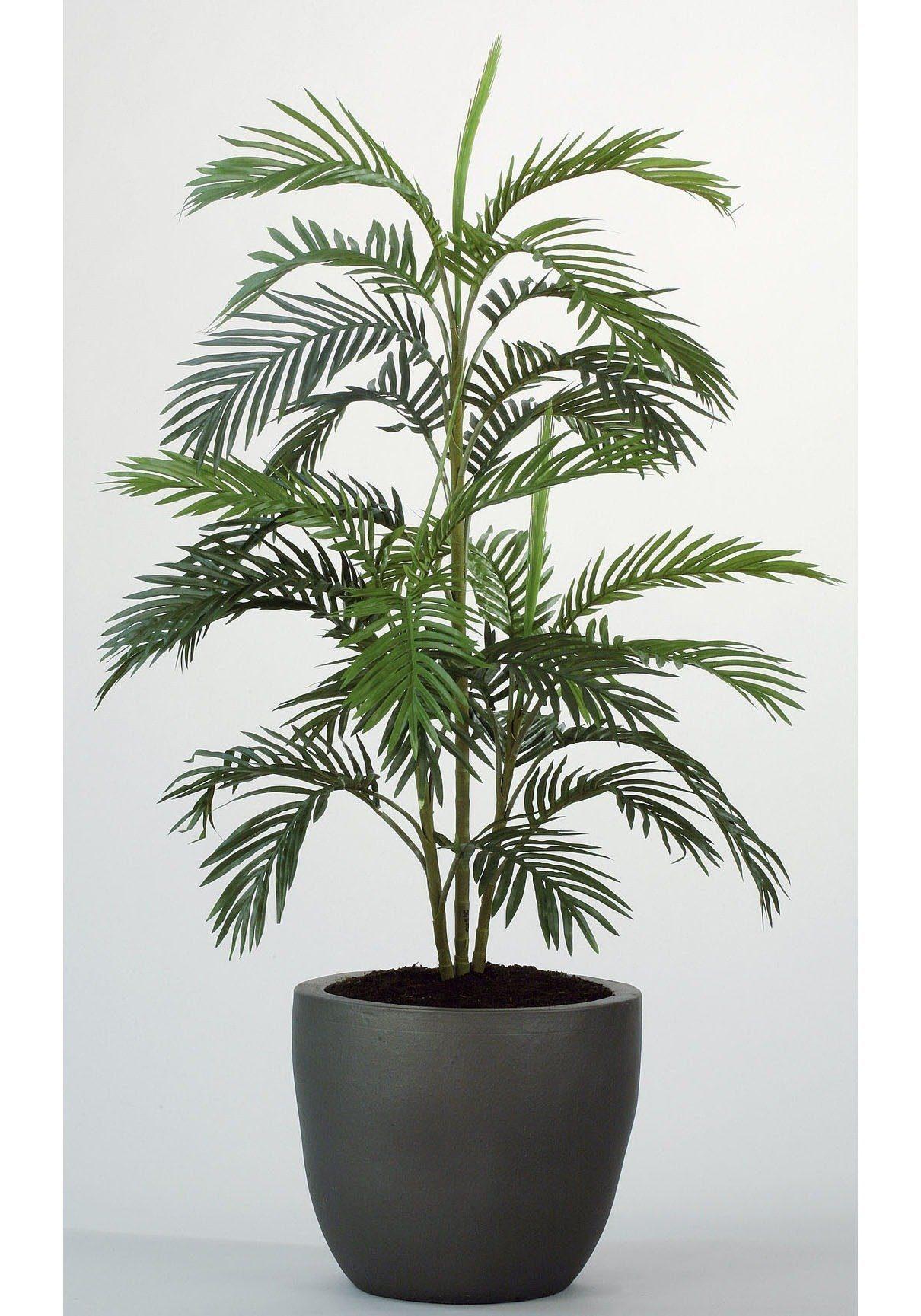 Kunstpflanze »Arecapalme«, H: 90 cm