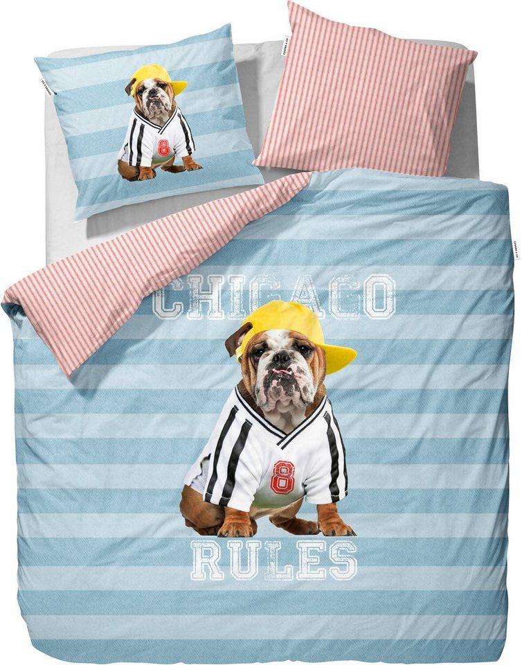Wendebettwäsche, Covers & Co, »Joop«, mit Hundemotiv in blau-rot