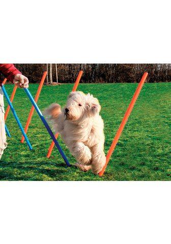 HEIM Slalumas šuniui »Dog Agility Slalom«