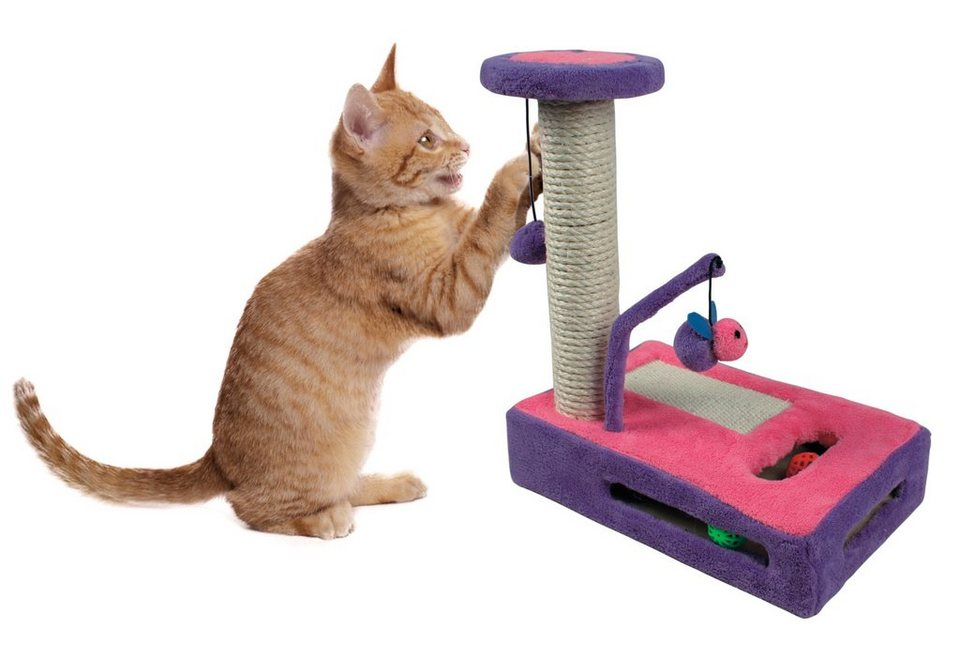 Katzen spielzeug set kratzspiel« kaufen otto