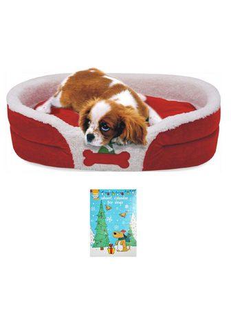 HEIM Šuns guolis »Weihnachtsset Hund« BxL: ...