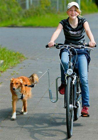Fahrradhalter »Fahrradhalter für Hunde« in silberfarben