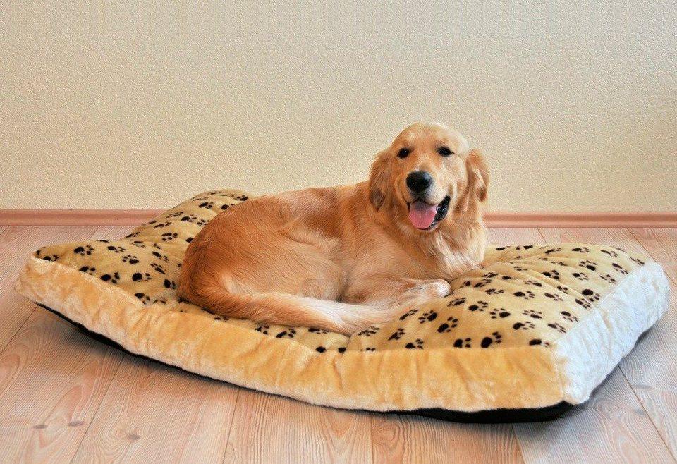 Hundebett und Katzenbett »Silvio« in beige/braun