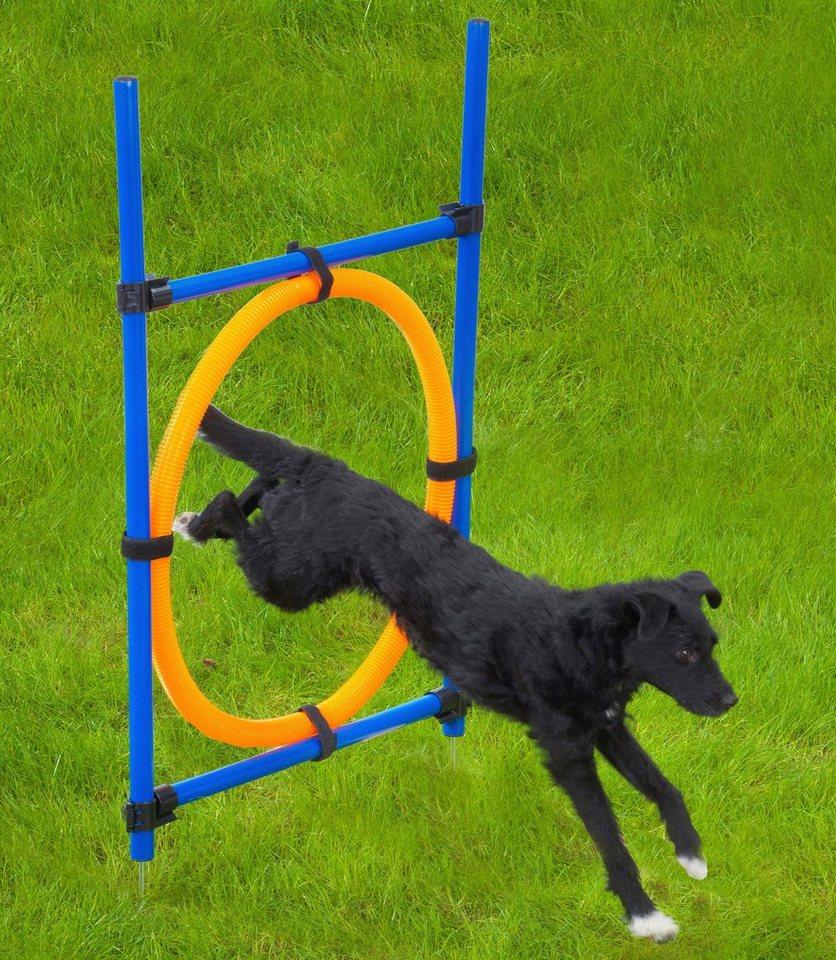 Hunde-Gummiring »Dog Agility Ring« in blau