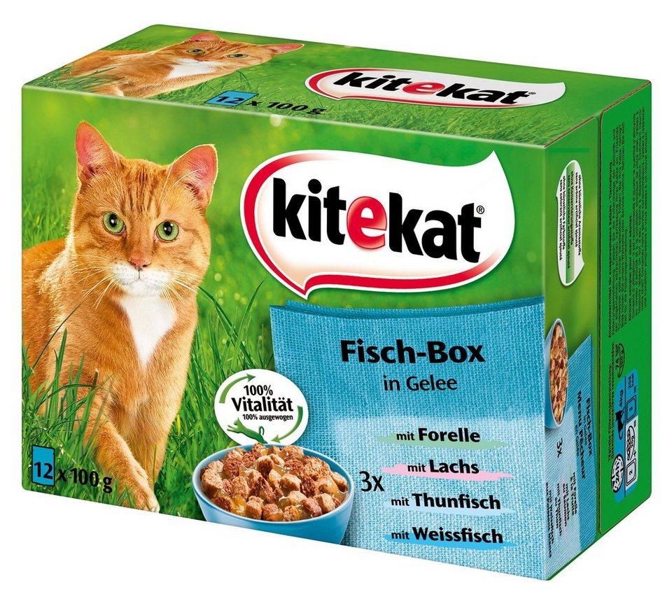 Set: Katzennassfutter »Fisch-Box in Gelee«, 4 Pakete mit je 12 Beuteln á 100 g in braun