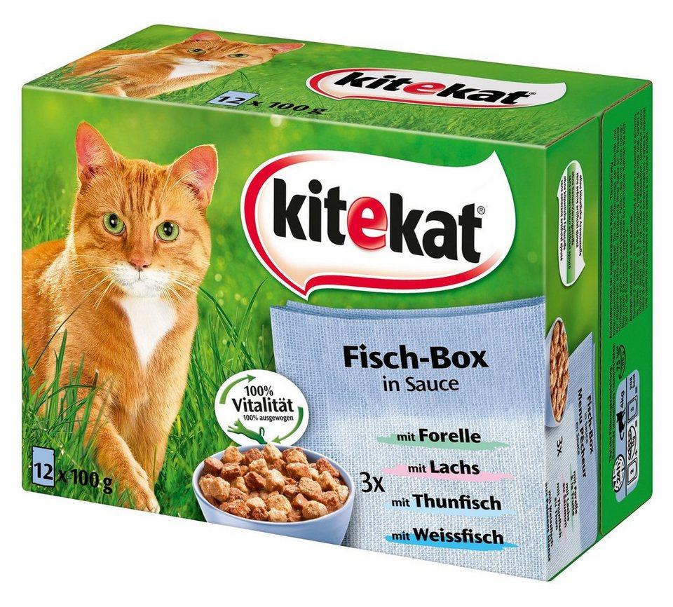 Set: Katzennassfutter »Fisch-Box in Sauce«, 4 Pakete mit je 12 Beuteln á 100 g in braun