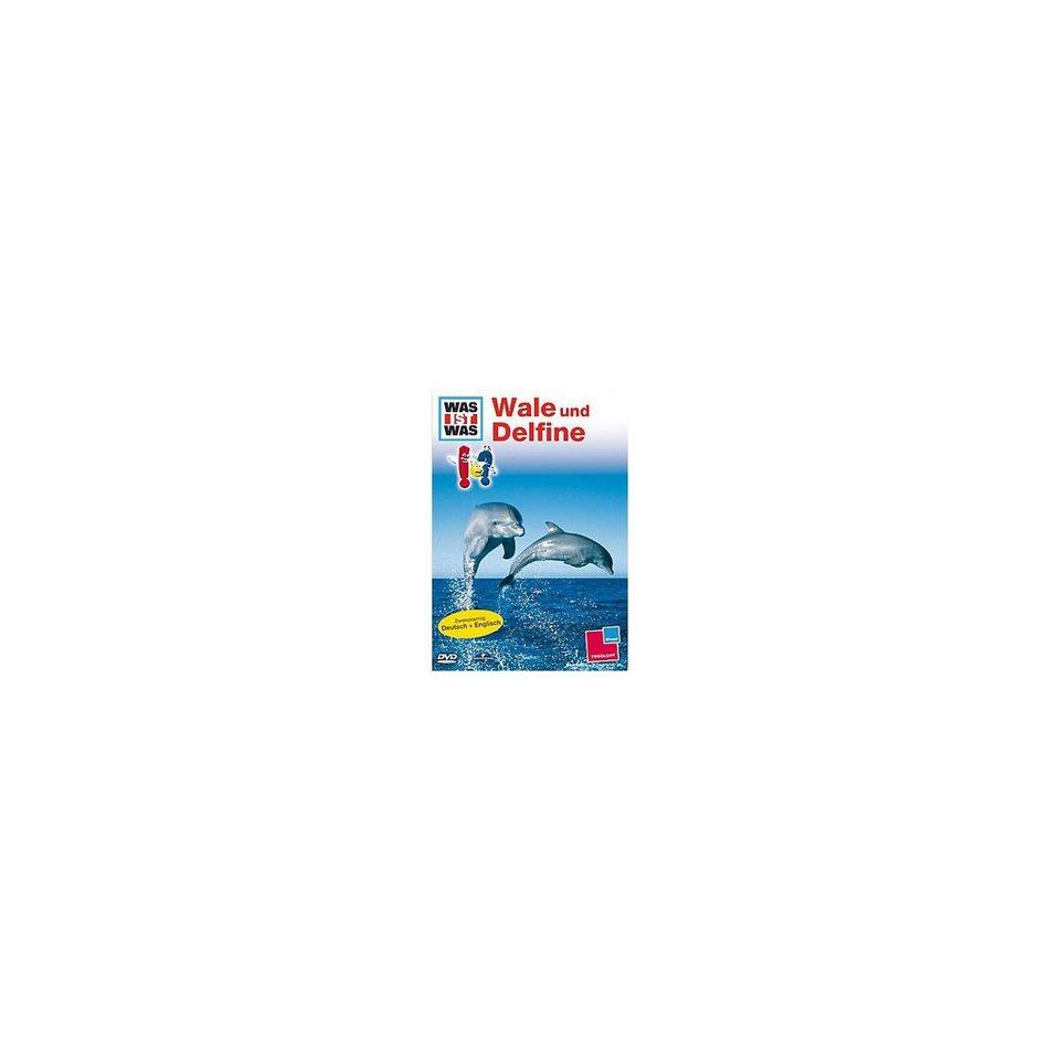 Universal Pictures DVD Was ist Was - Wale und Delphine