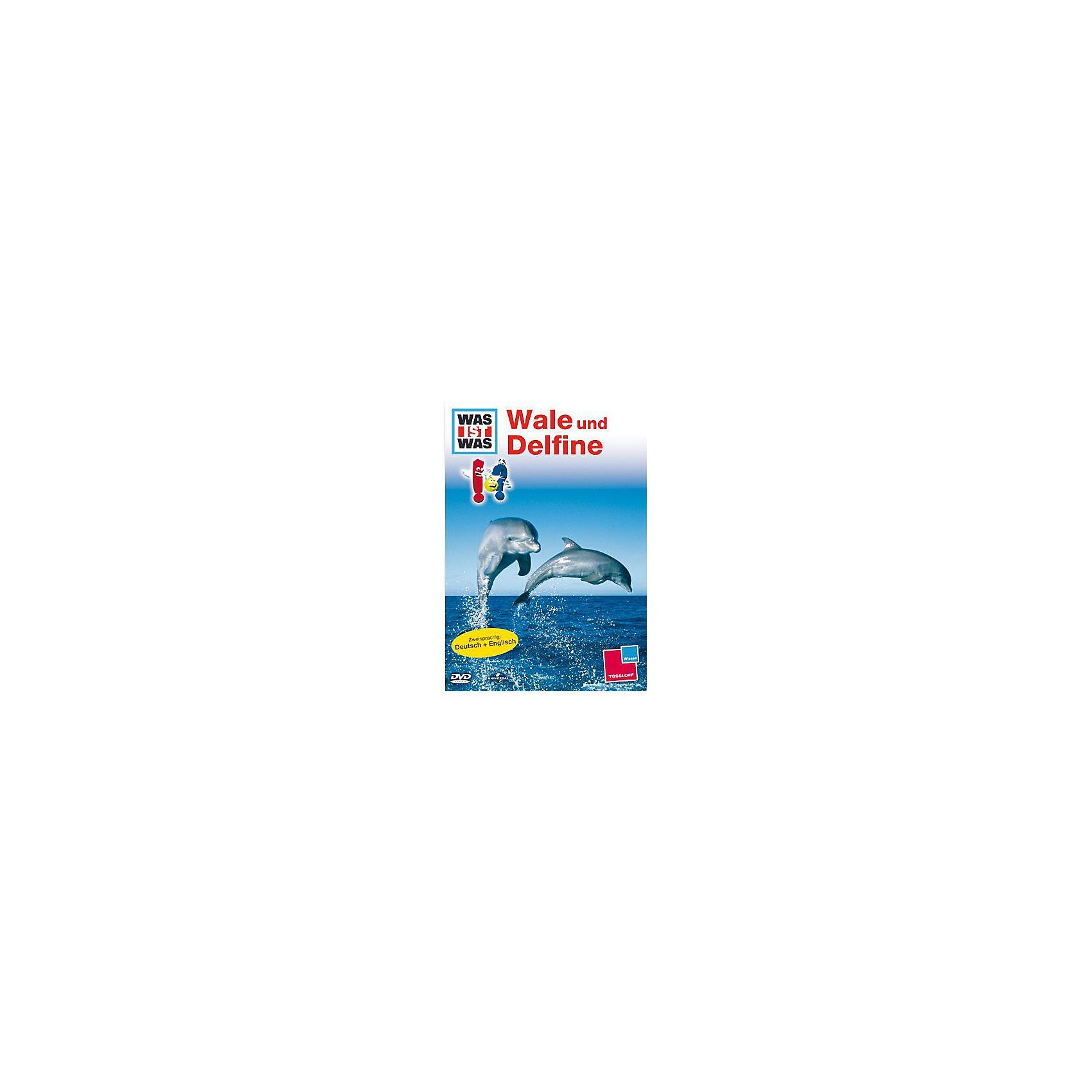 Universal DVD Was ist Was - Wale und Delphine
