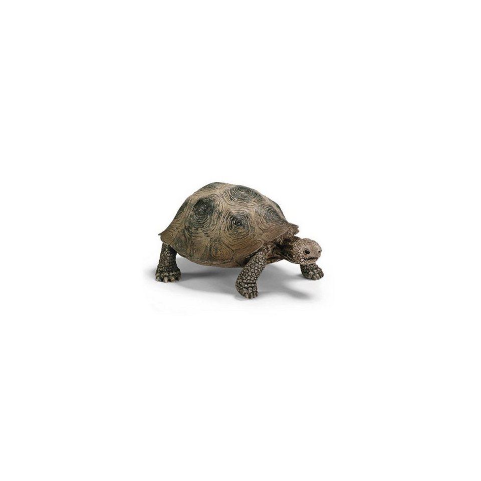 Schleich 14601 Wild Life: Riesenschildkröte