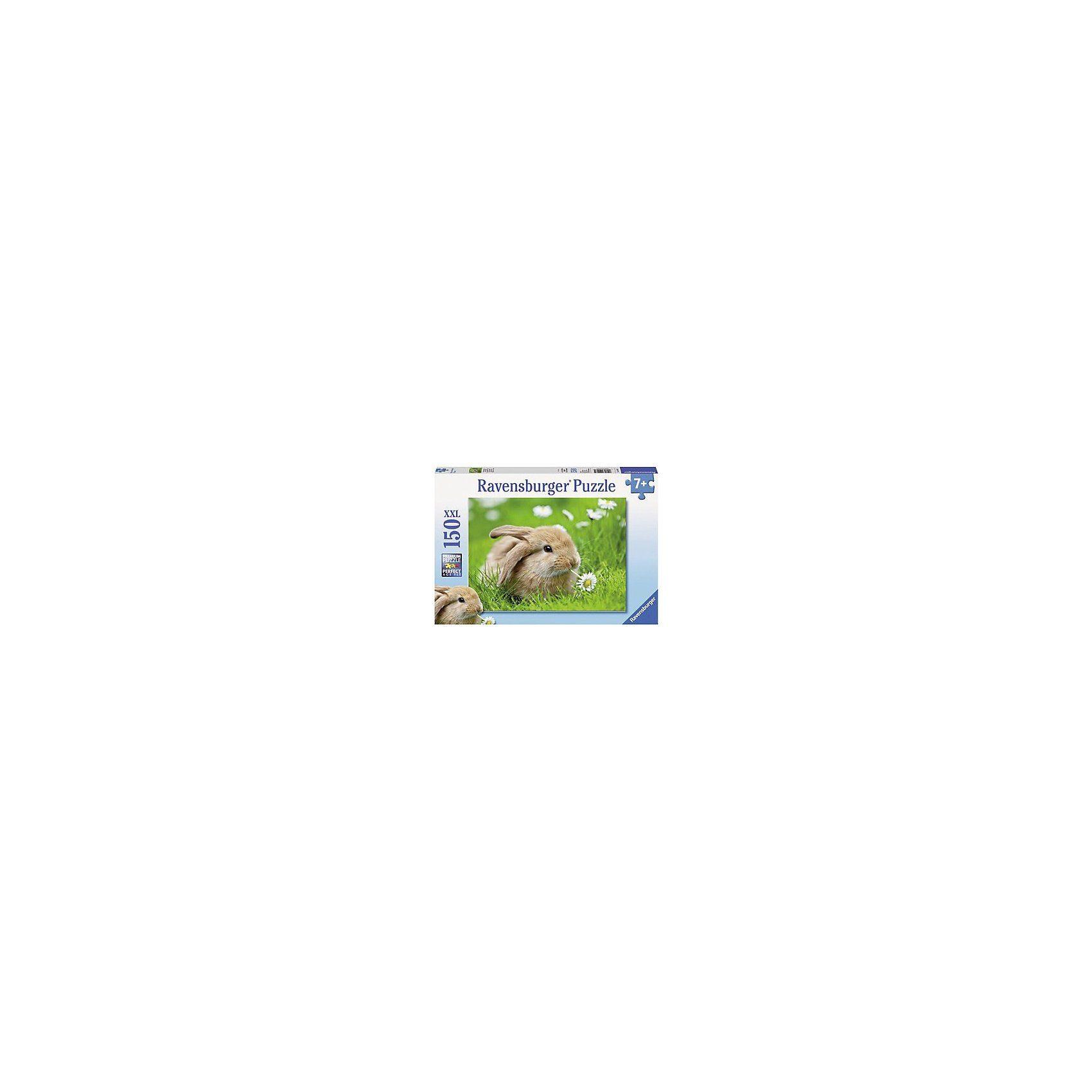 Ravensburger Puzzle 150 Teile XXL - Goldiges Langohr