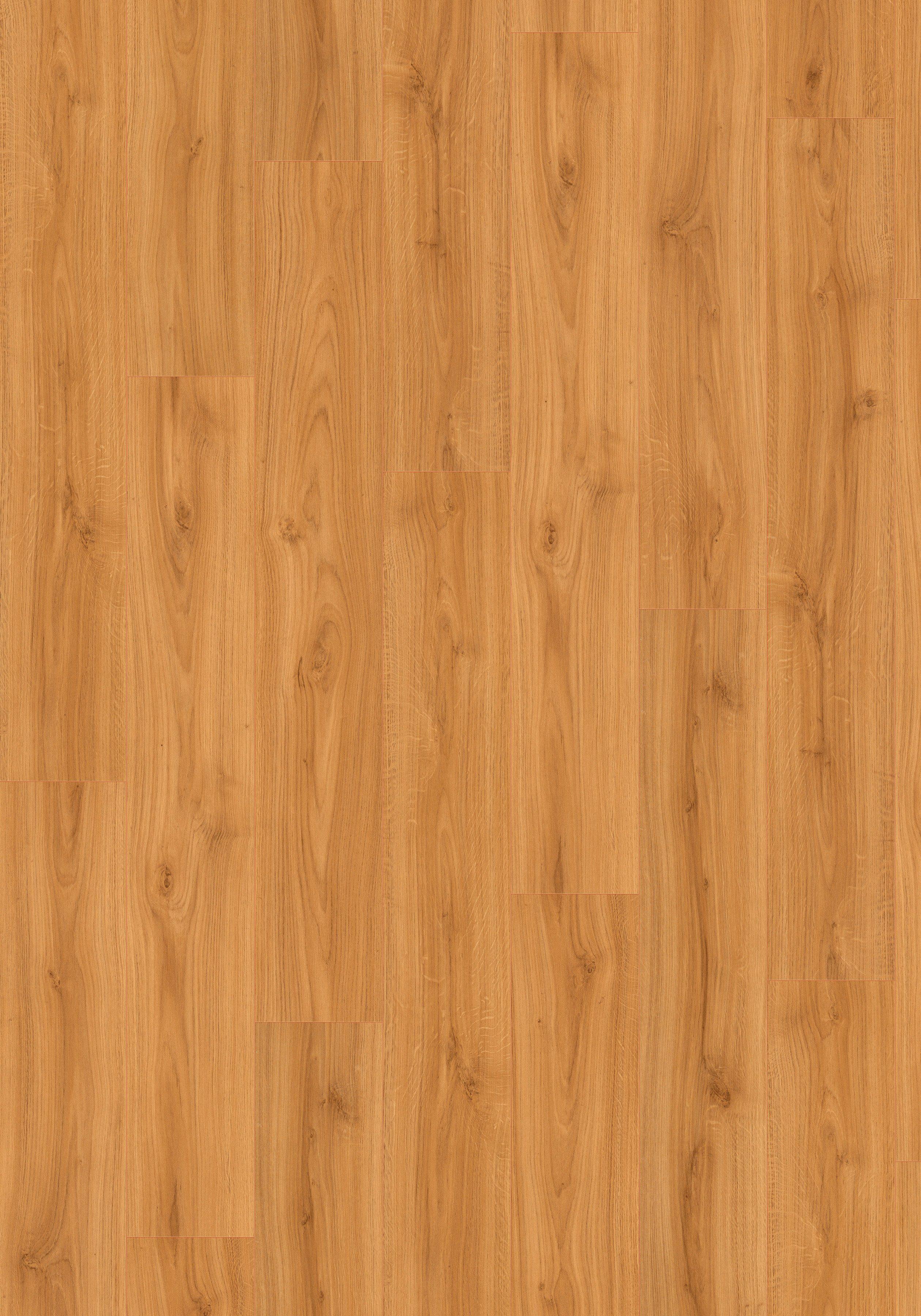 Megafloor Sockelleisten passend zum Korkpluslaminat »Megafloor cork+«, allee natur Nachbildung