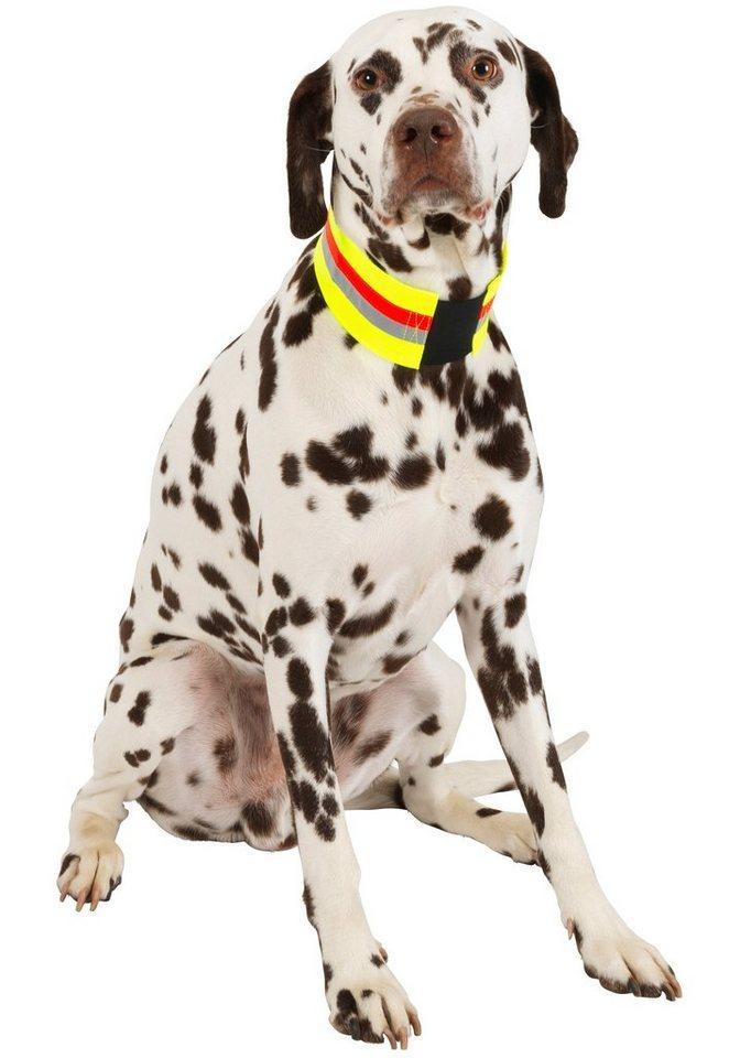 Hundehalsband »Signalhalsband« in gelb-rot