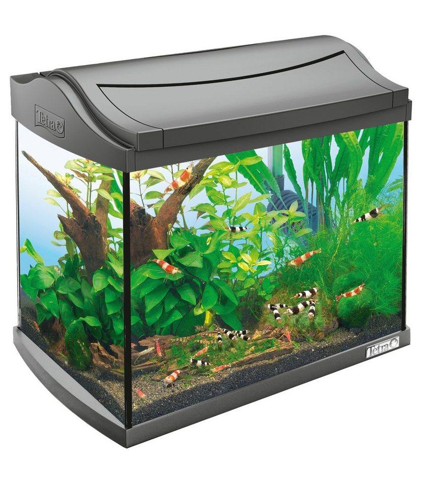 Aquarium »AquaArt ll Shrimps« 20 l, anthrazit in anthrazit