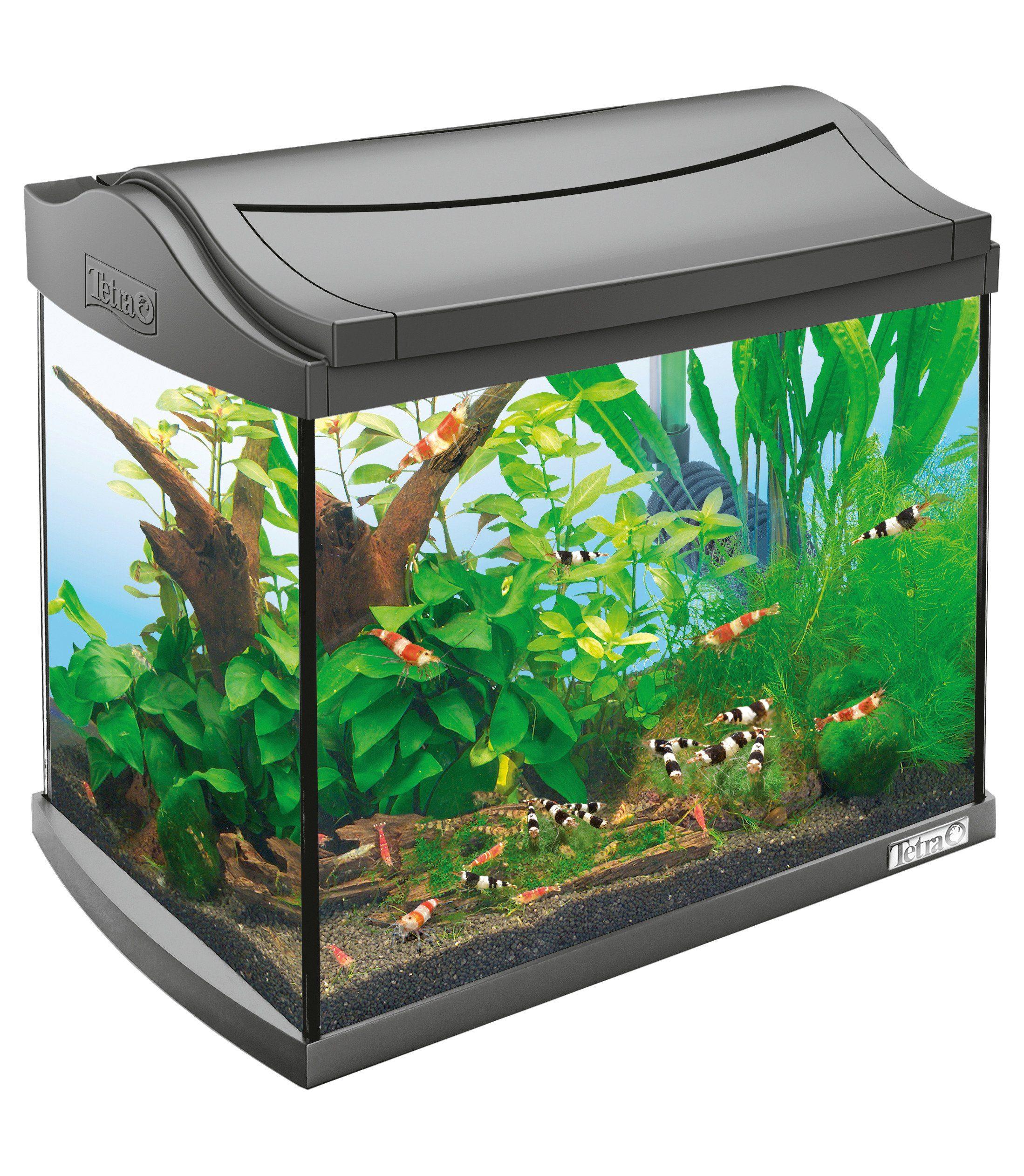 Aquarium »AquaArt ll Shrimps« 20 l, anthrazit