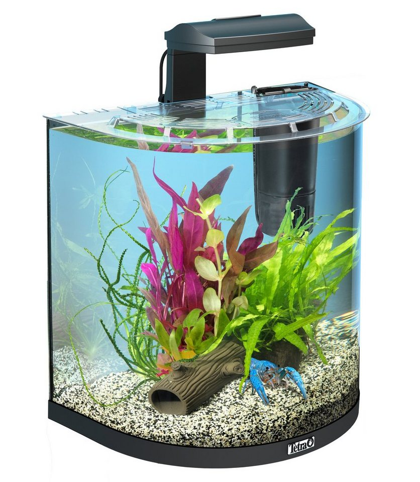 Aquarium »AquaArt II Explorer Line Crayfish«, B/T/H: 41/28/51 cm, 30 l in anthrazit