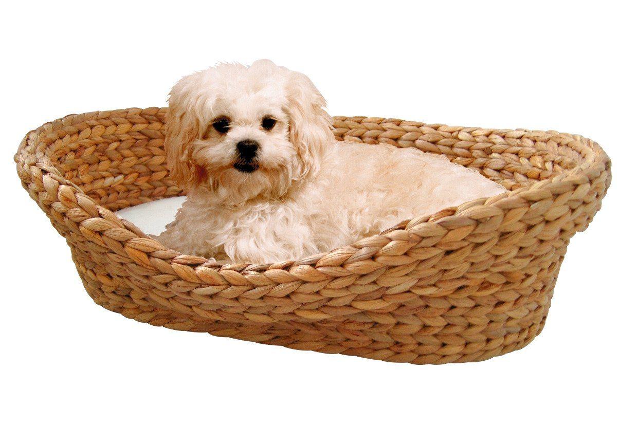 Hundebett und Katzenbett »Wasserhyazinthe«